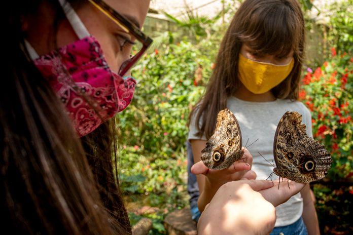 Parque das Aves proporciona lazer e aprendizado ao mesmo tempo. Foto: Divulgação