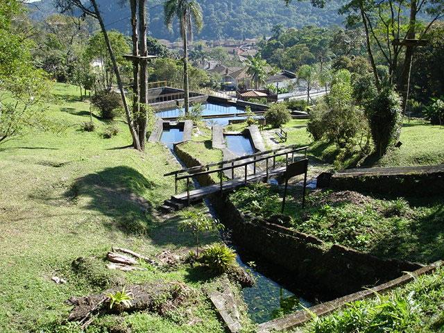 Parque Municipal Nascentes de Paranapiacaba. Foto: Divulgação/PSA